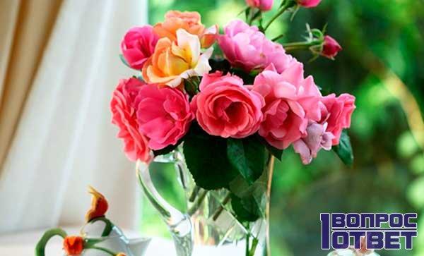 Розы будут стоять дольше