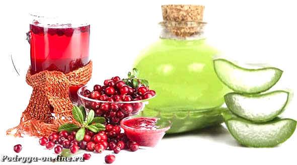 Алоэ лечебные свойства домашние рецепты польза и вред. Столетник для здоровья и красоты.