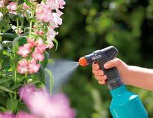 Как используется Фитоверм в саду