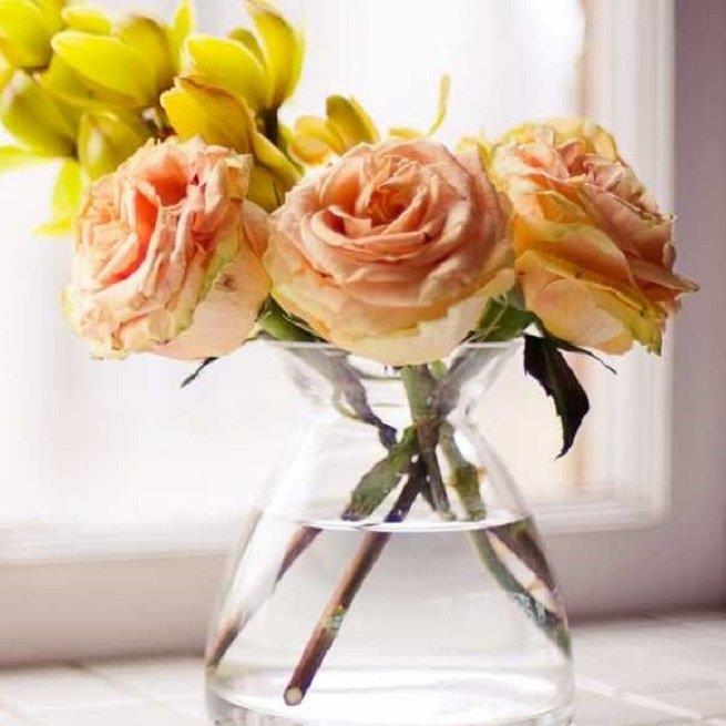 Как подольше сохранить срезанные розы в вазе?