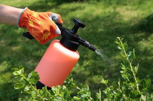 Как защитить растения от вредителей